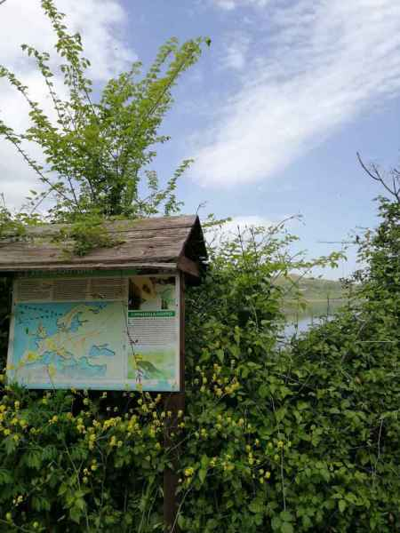 Diga oasi di Campolattaro, tabellone informativo